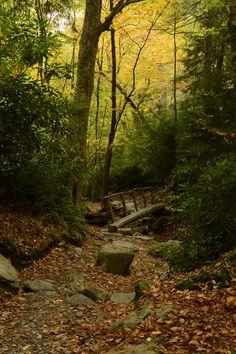 Mount LeConte, Great Smoky Mountains