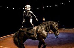Jacques Ferrari Bartabas equestrian theater