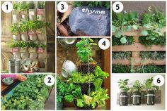 Mrs. Fields Secrets Herb Garden