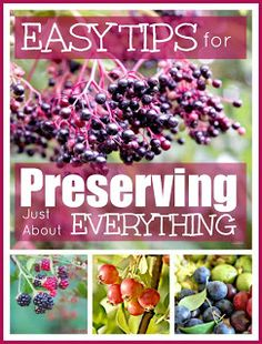 Mums make lists: Tips for preserving almost any foods.