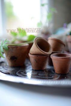 Antique Terracotta pots - set of 6 pots