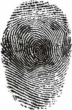 fingerprint illusions 5 optical illusion