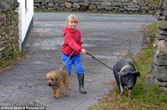 Alfie y Runty...sacaron a pasear a la niña...