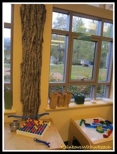 This post has numerous ideas for bringing trees into your classroom! Don't you just want to touch this bark?