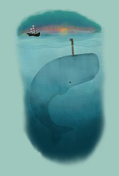 'whale watching'