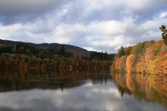 Autumn falling at Pitlochry, Perthshire.