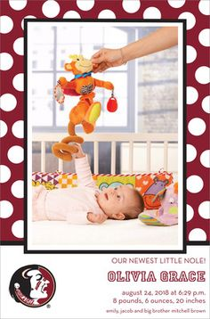 Florida State University Dotted Border Photo Baby Announcements