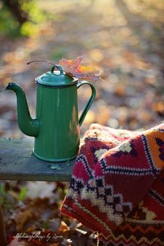 Enjoy the crisp temperatures - a blanket, a bench, a book, and some tea.