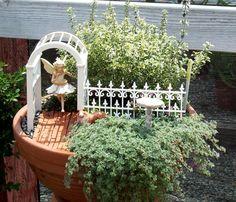 Container fairy garden.