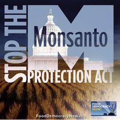Monsanto Protection Act. What is it about ?  Basically it would strip judges of their constitutional mandate to protect consumer rights and the environment, while opening up the floodgates for the planting of new untested genetically engineered crops, endangering farmers, consumers and the environment.