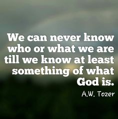 We can never know who or what we are till we know at least something of what God is. - A. W. Tozer