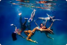 things to think about for playing around with underwater photography (photojojo)