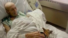 See the sweet reunion that brought a man and his dog back to life