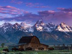 Breathtaking image of Grand Teton National #Park captured at dawn via National Geographic #Wyoming #US #travel #ttot http://ift.tt/1tbe99i