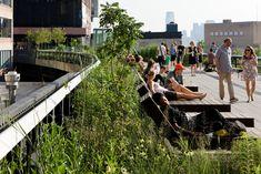 High Line Park Photos | Friends of the High Line