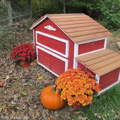 Upcycled Chicken Coop
