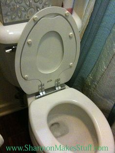 Brilliant!!!  Inside the lid, kids' potty seat from Home Depot.