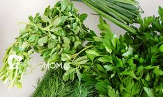 How To Dehydrate Fresh Herbs | The Snap Mom