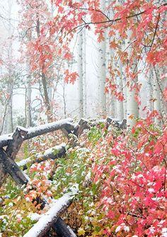 mountains, winter, utah, autumn, snowfal, natur, wasatch mountain, beauti, place