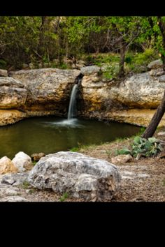 Another photo of the spring/ Big Spring Texas