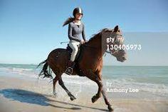 go horse riding