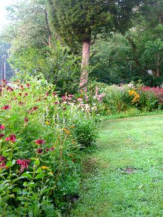 My summer perennial border