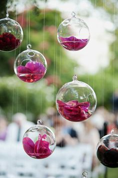 simple clean glass orbs each holding a single bloom for simplicity and effect. could be beautiful hanging from decorative boxed trees featured in weddings photos from venue, with candles floating in some as well in outdoor area would have a clean modern look with a lovely glow for your reception