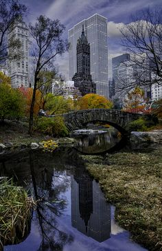 City reflections, Central Park, New York   Beautiful