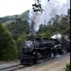 Old stream engine, Golden Gate railroad Museum.