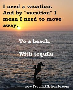 I need a vacation seahors