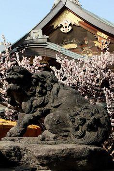 Yushima Tenjin Shrine, Tokyo, Japan: photo by Masamichi Ishisone
