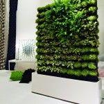Greenwalls by Greenworks