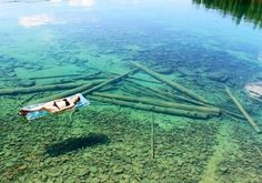 This lake in Montana is 370 feet deep but so clear it seems shallow!