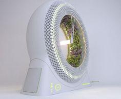 Green Hydroponic Wheel