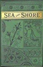 sea and shore vintage book