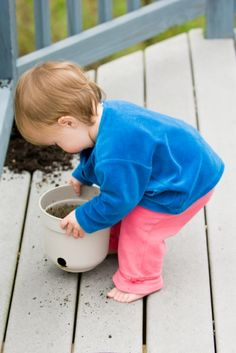 Toddlers -- they love packing and unpacking things -- including flower pots.  If there is something you don't want unpacked, keep it out of reach.