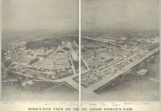 Bird's Eye View of St. Louis World's Fair, 1904.