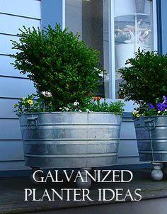 decor, galvan planter, planter idea, outdoor, backyard