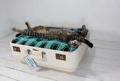 Vintage suitcase, new ideas!