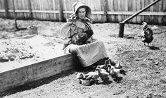 Early Settler Farming | Poultry was necessary for the settlers