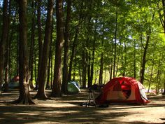 camping tips, bugs, tent, original gifts, camps, gift cards, happy campers, spot, camping supplies