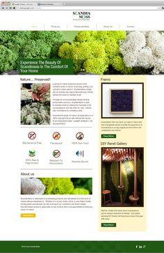 Scandia Moss | Preserved Scandinavian Moss