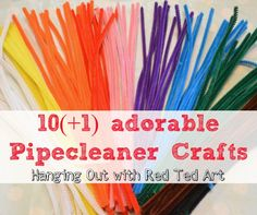WONDERFUL Pipecleaner craft ideas. Comes with a must see video.