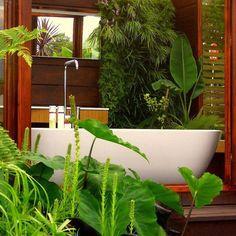 Detalhe de belas plantas complementando o visual do lavabo.