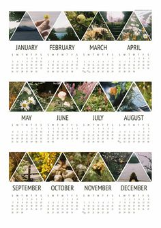aprons and birds: 2014 calendar