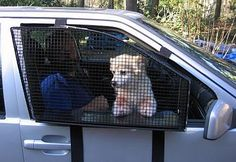 """The """"BreezeGuard"""" is a protective cage that mounts into a car door allowing the dog to enjoy the breeze in safety."""