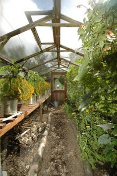 Hobby Greenhouse Plans
