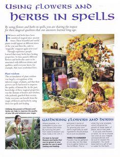 Herbs:  Using #Flowers and #Herbs in Spells.