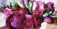 11 Expert Tips For Keeping Cut Blooms Fresh | Homesessive.com
