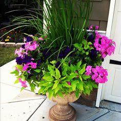 flower urn, urn flower